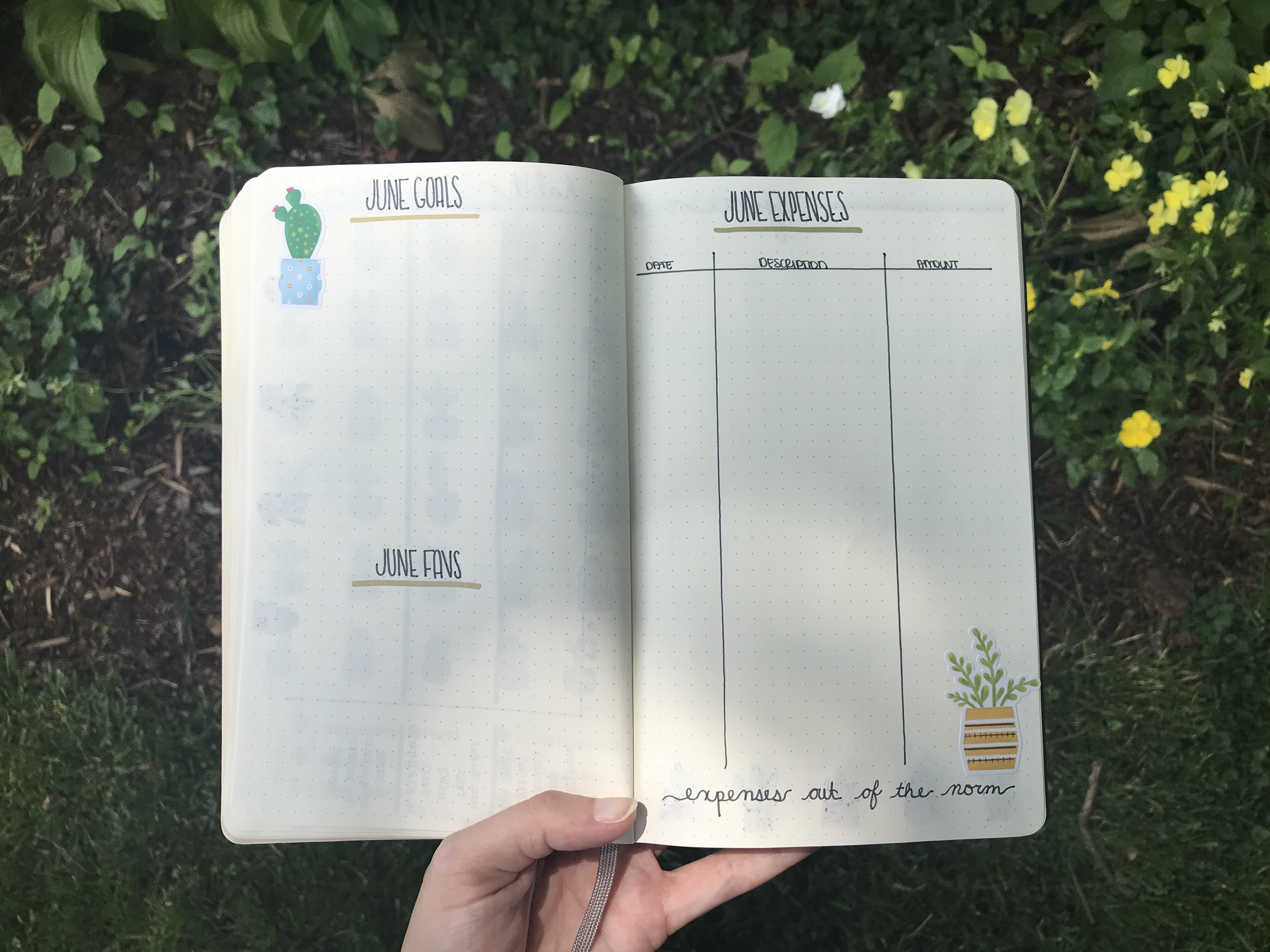 goals and expenses tracker