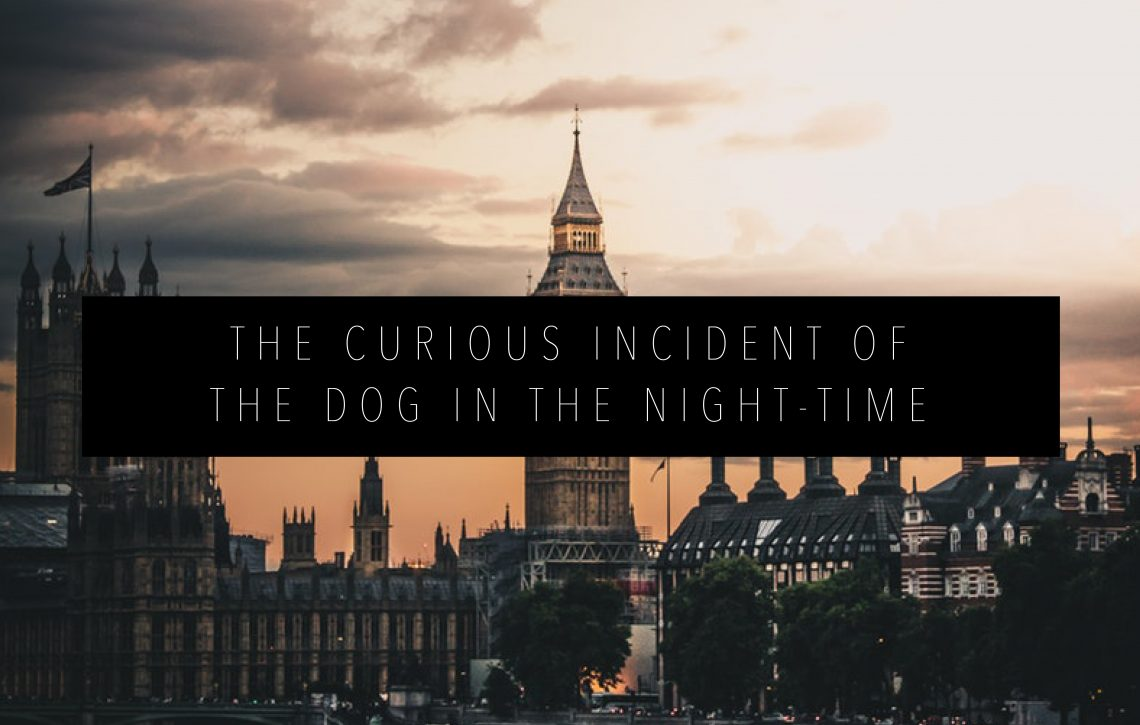 CURIOUS INCIDENT OF THE DOG IN THE NIGHT TIME FEATURED IMAGE