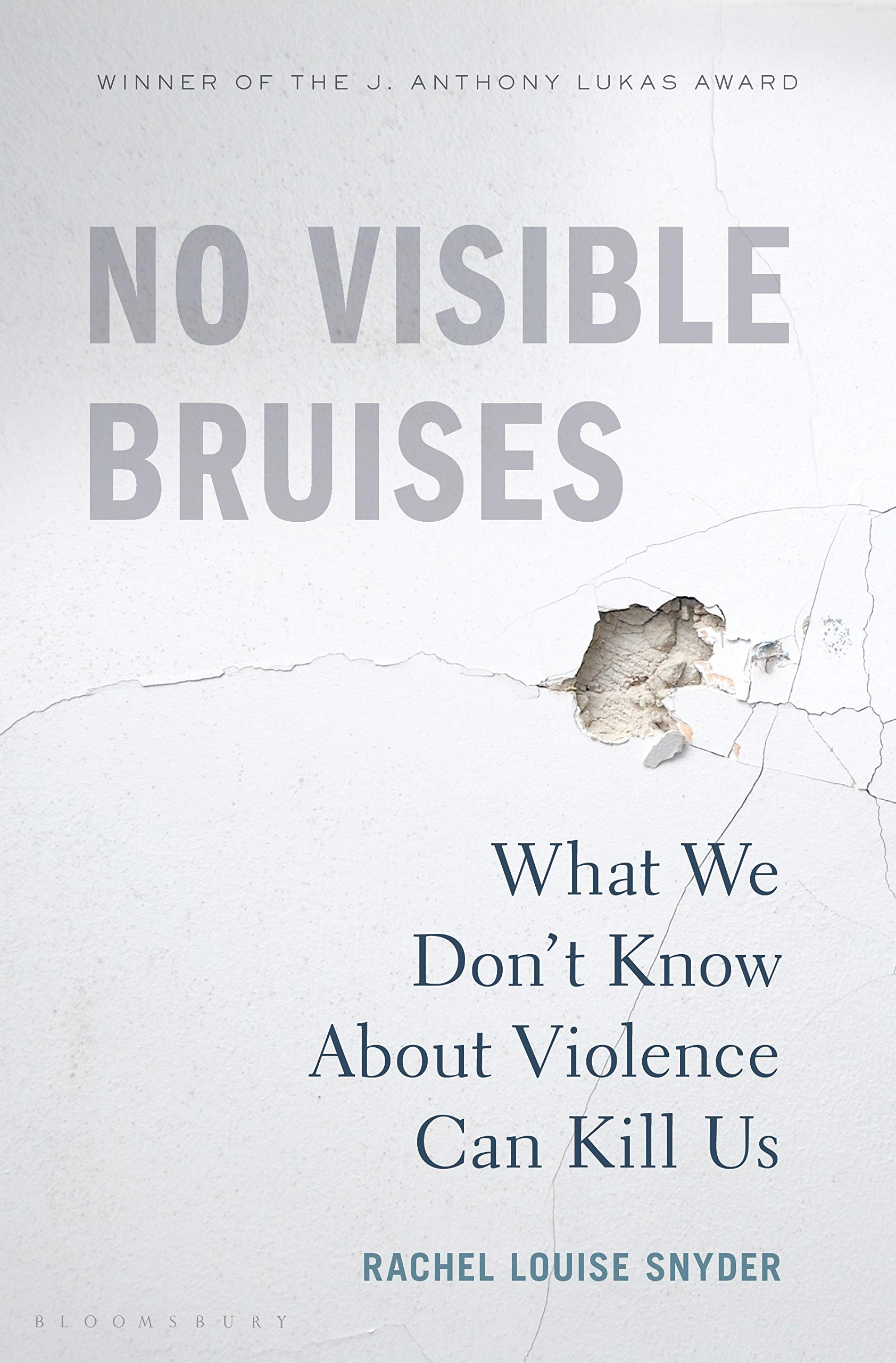 No Visible Bruises 2019 book releases