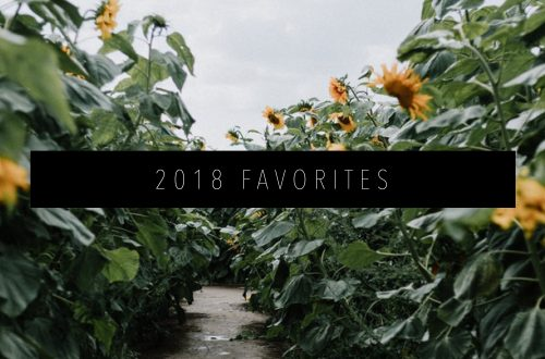 2018 FAVORITES FEATURED IMAGE