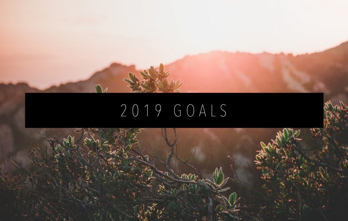 2019 GOALS FEATURED IMAGE