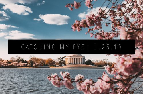 CATCHING MY EYE 1.25.19 FEATURED IMAGE