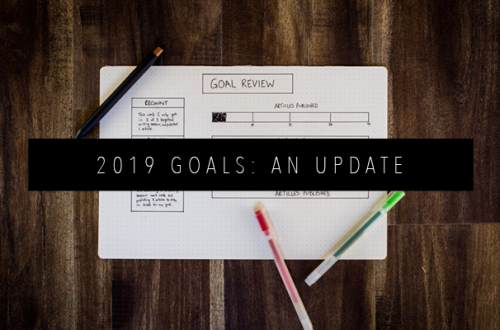 2019 GOALS AN UPDATE FEATURED IMAGE