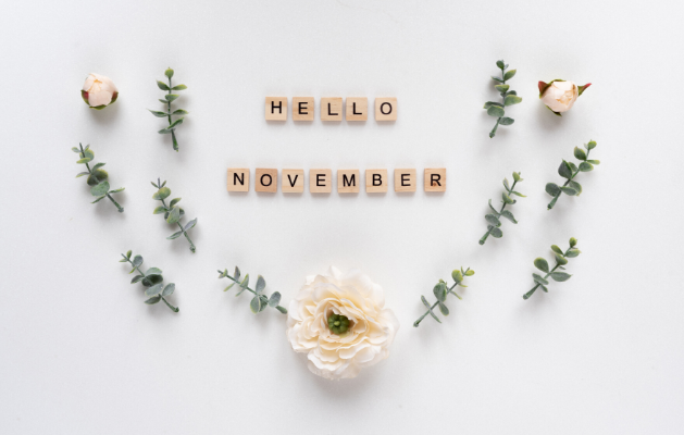 November Goals Featured Image